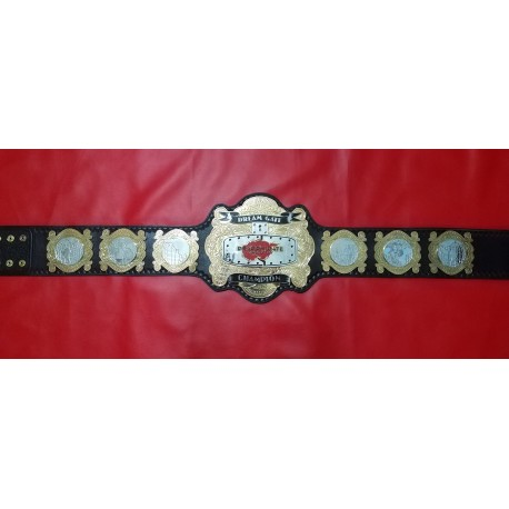 Dragon Gate Dream Championship Belt