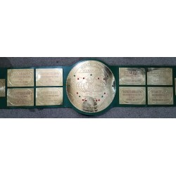 Big Green HeavyWeight Championship Belt