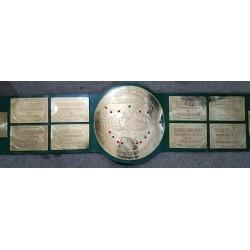 Big Green HeavyWeight Championship Belt