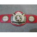 World Juggalo Championshit Wrestling Belt